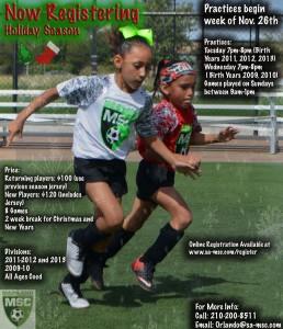 Holiday Season Website